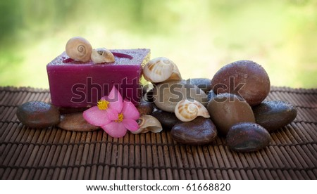 Spa setting with wet stones and shells. - stock photo
