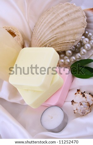 Spa shell Household for cleanliness