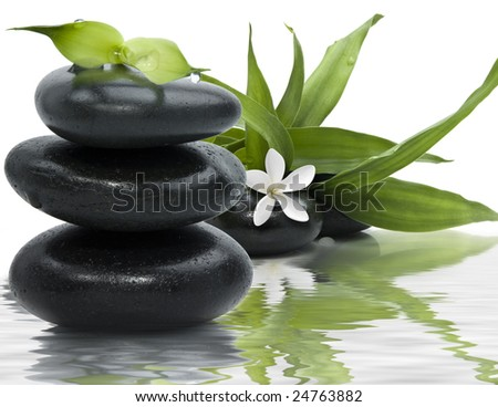 Spa still life with black stones and bamboo leafs in the water - stock photo