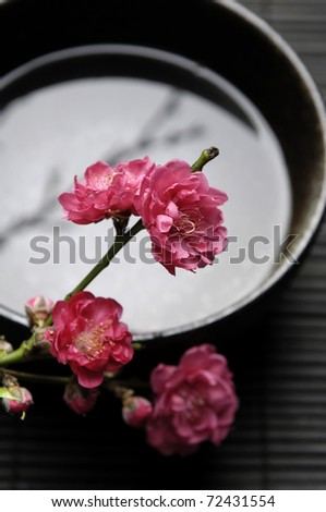 Spa still life with branch of red flowering quince in bowl - stock photo