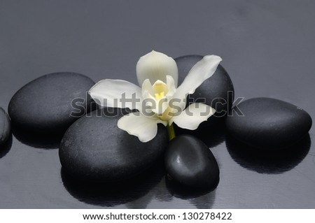 Spa still life with gardenia flower and zen stones