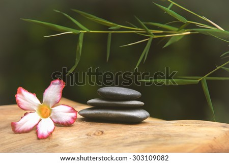 Spa still life with stacked of stone, flower and bamboo leaf - stock photo