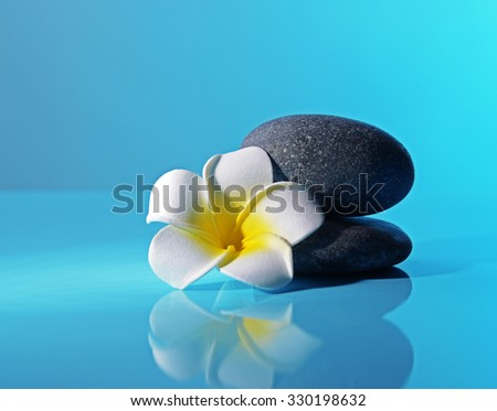 Spa stones and flower on blue background