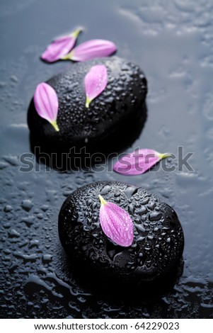 spa stones and flowers - stock photo