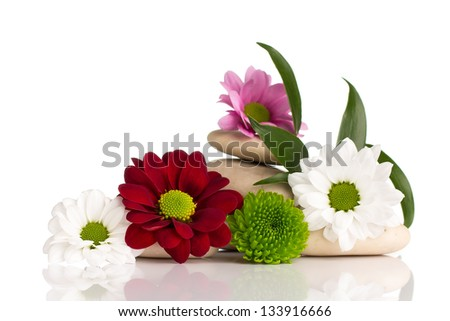 Spa stones and flowers isolated on the white background. - stock photo