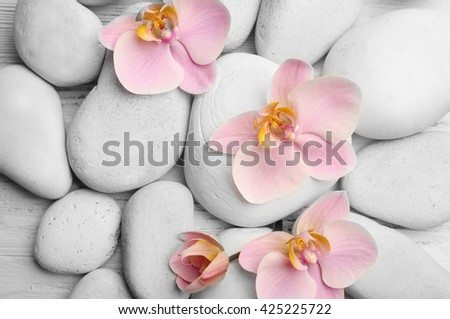 Spa stones and orchid flowers closeup - stock photo