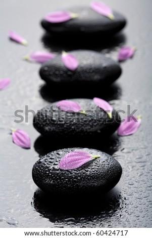 spa stones and petals - stock photo