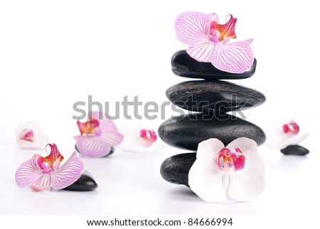 Spa stones with pink flower on white background - stock photo