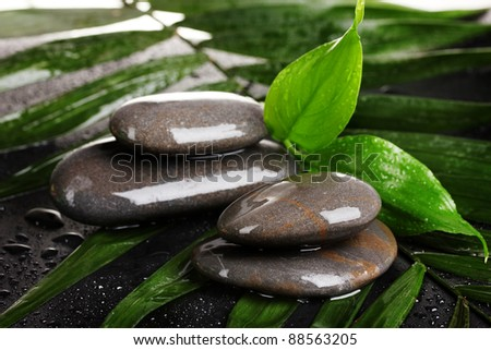 spa stones with water drops on palm leaf on black background