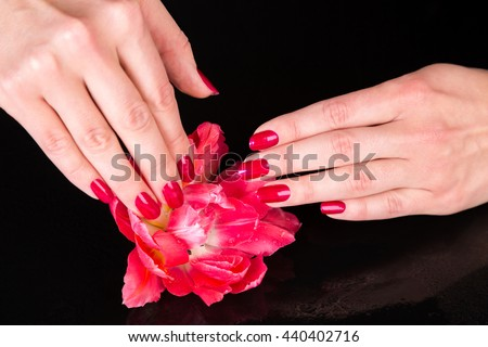Spa theme close up over top of pretty hands under beautiful red flower over black background with copy space - stock photo