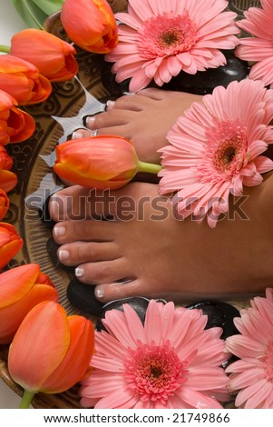 Spa treatment with beautiful elegant tulips and gerberas - stock photo