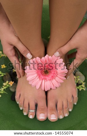Spa treatment with beautiful Gerbera daisy - stock photo