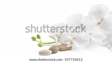 Spa white orchid with massage stones on white background - stock photo