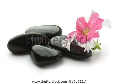 Spa with black stones and flower