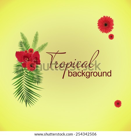 Space for your text near palm tree leaves and red flowers