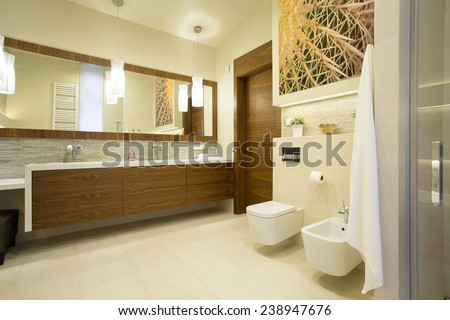 Spacious washroom with wooden furniture in modern interior - stock photo
