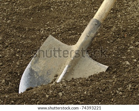 spade ready to prepare vegetable bed for sowing - stock photo