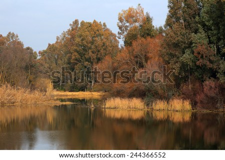 Spain, Extremadura Region, The Guadiana River and nature reserve near Merida in Autumn colours. - stock photo
