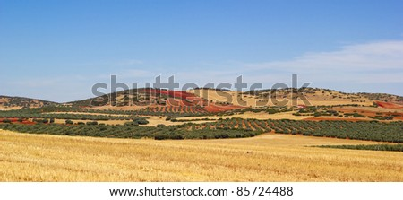 spain landscape, cultivated fields - stock photo