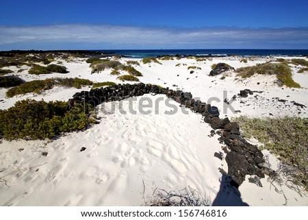 spain white  beach  spiral of black rocks in the   lanzarote  - stock photo