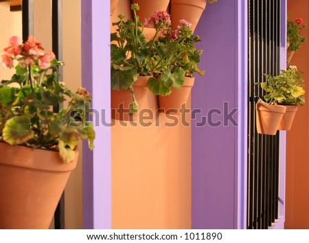 Spanish house with geraniums