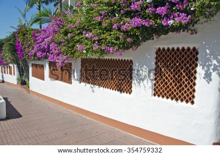 Spanish white and brown brick and cement wall with plants growing on sunny day - stock photo