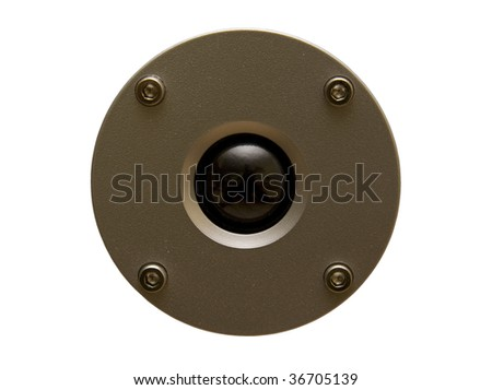 Speaker isolated on white,clipping path