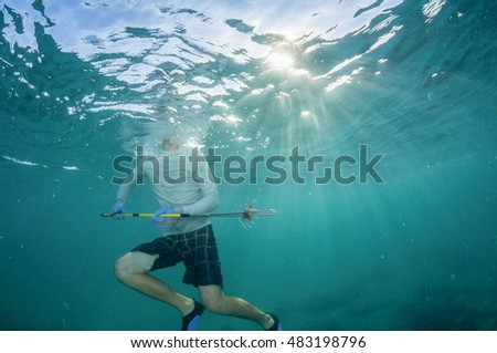 Spear fisherman catches an invasive lionfish in the Caribbean. These fish are devastating the reefs and reef fish populations throughout the Caribbean.