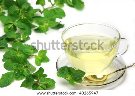 spearmint and herb tea