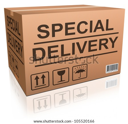 special delivery cardboard box express shipping of online order from internet web shop, webshop icon - stock photo