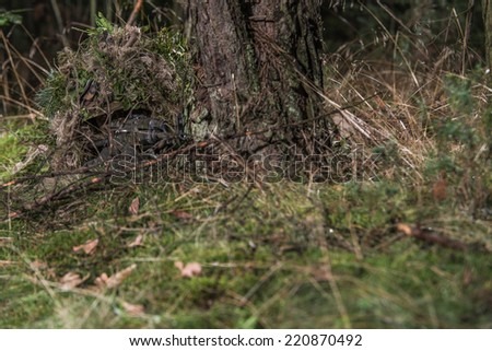 special forces soldier, lying on the ground, covered by ghillie suit, almost invisible in his camouflage, aiming with assault rifle - stock photo
