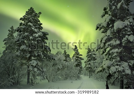 Spectacular aurora borealis (northern lights) over a path through winter landscape in Finnish Lapland. - stock photo