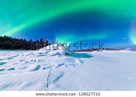 Spectacular display of intense Northern Lights or Aurora borealis or polar lights forming green swirls over snowy winter landscape - stock photo
