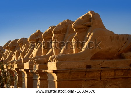 SphInxes in Luxor temple in Egypt - stock photo