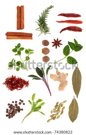 Spice and herb selection in arranged in an abstract design, isolated over white background. - stock photo