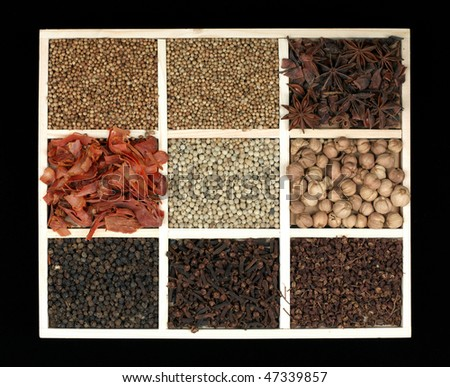 spice collection on black background (large format photo) - stock photo