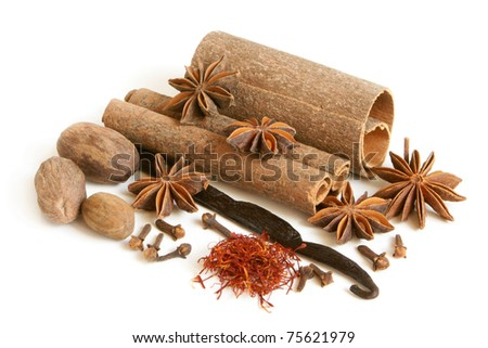 Spice collection on white background - stock photo