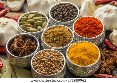 Spice for the Indian curry - stock photo