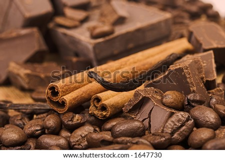 spices and chocolate - stock photo