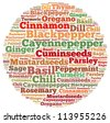 Spices and Herbs info-text graphics and arrangement concept on white background (word cloud) - stock photo