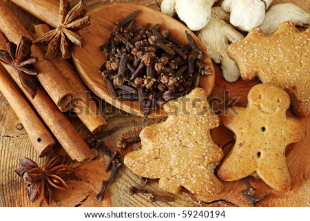 Spices for Christmas cakes - stock photo