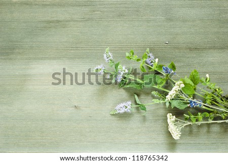 spices, herbal plants on wooden table , top view - stock photo