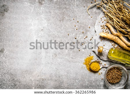 Spices , herbs and olive oil on a stone stand. On the stone table. Free space for text . Top view - stock photo
