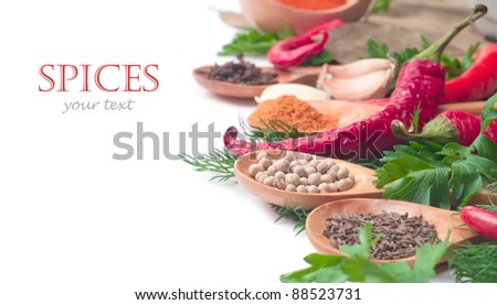 spices in the spoons on white background - stock photo