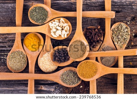 Spices on wooden spoons - stock photo