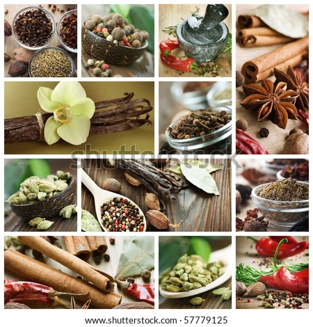 Spices set.Various seasonings for cooking. - stock photo