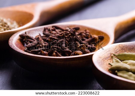 Spices set.Various seasonings for cooking, anise, cardamom, cloves on wooden spoon - stock photo