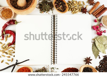 Spices with recipe book on white background - stock photo