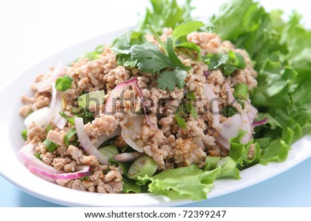 Spicy Chicken with Mint Leaf (Larb Chicken) - stock photo