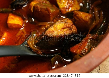 Spicy Fish Curry / Kerala fish curry close up, selective focus - stock photo